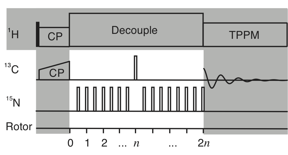 REDOR Pulse Sequence