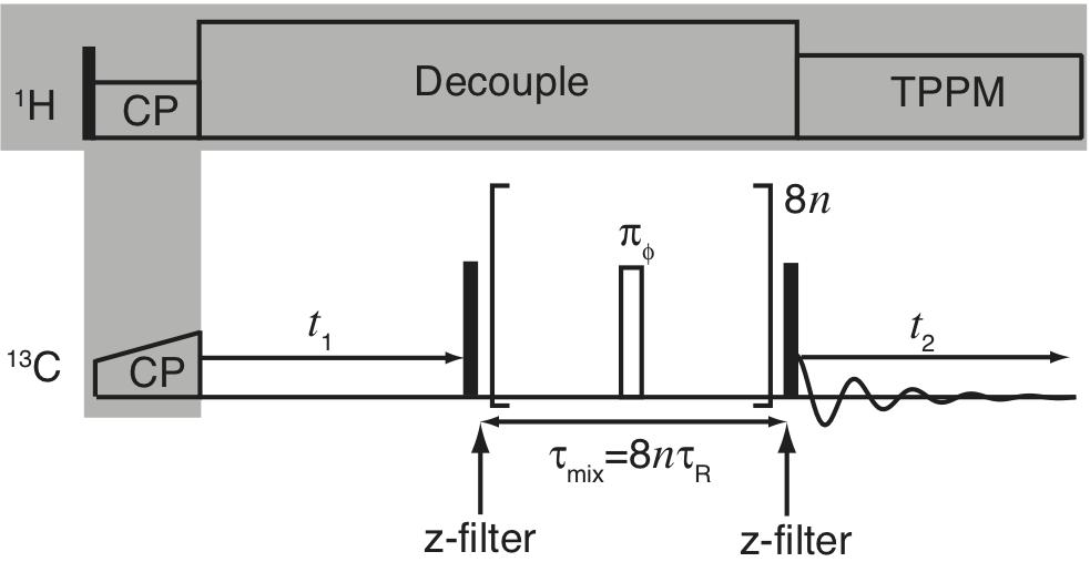 2D RFDR Pulse Sequence